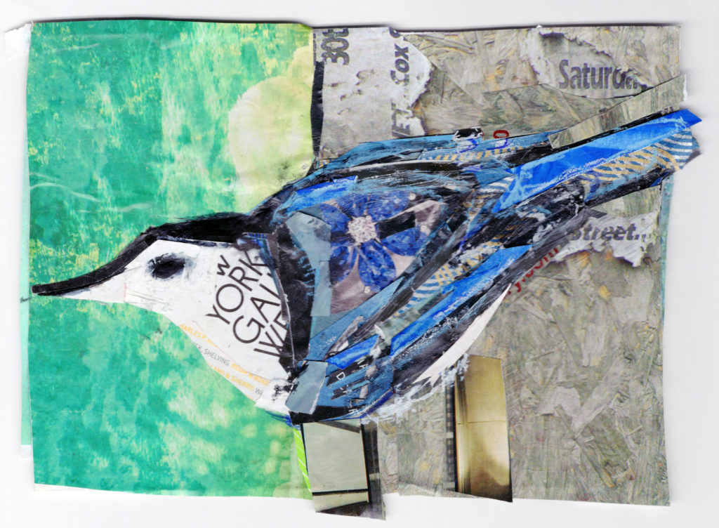 Nuthatch by Kathryn DeMarco, collage, 9 x 11 at Craven Allen Gallery