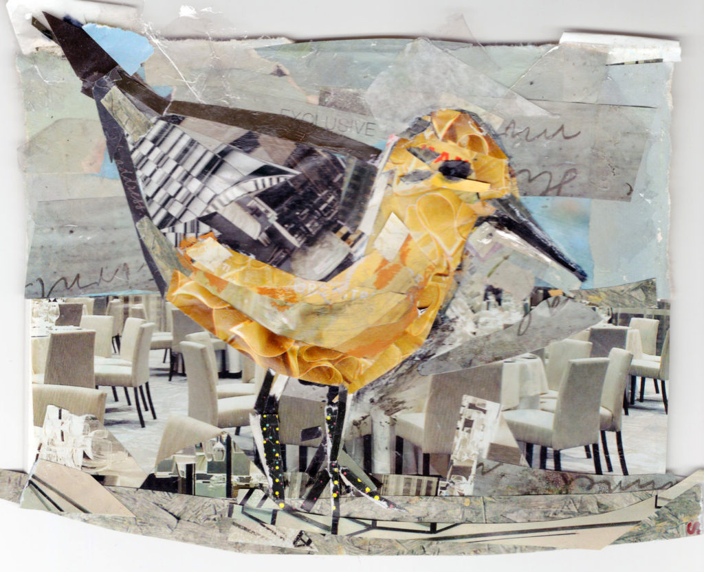 Red Knot by Kathryn DeMarco, collage, 9 x 11 at Craven Allen Gallery