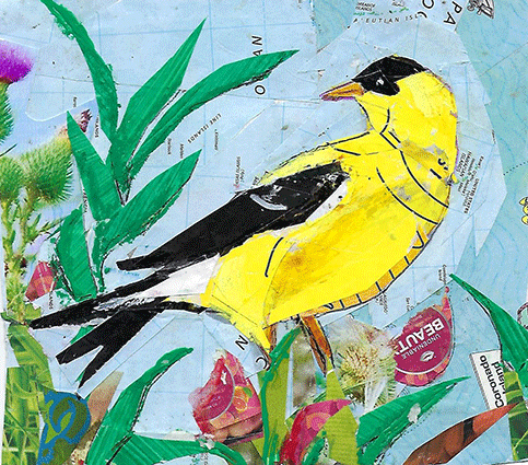 Yellow Finch, collage, 8 x 10 by Kathryn DeMarco at Craven Allen Gallery