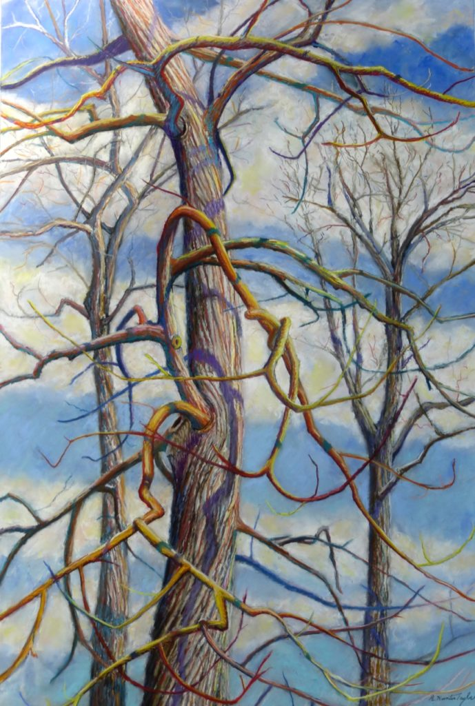 Branching Out by A. Hunter Taylor, pastel, 36 x 24 at Craven Allen Gallery