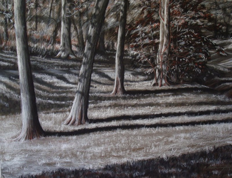 Long Shadows by A. HunterTaylor, pastel, 19.5x25 at Craven Allen Gallery