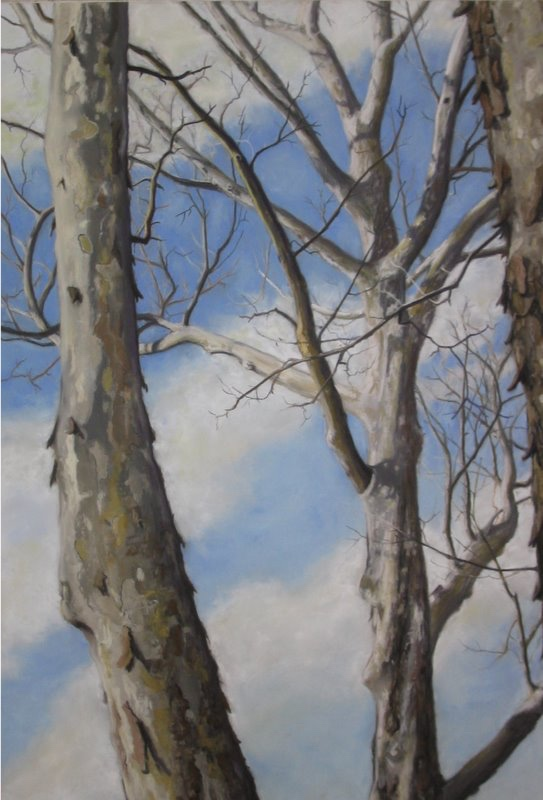 Sycamore Aesthetics II (l)diptych by A. Hunter Taylor, pastel, 36 x 24