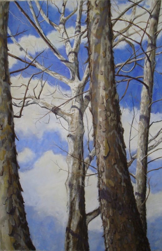 Sycamore Aesthetics II (r)diptych by A. Hunter Taylor, pastel, 36 x 24 at Craven Allen Gallery