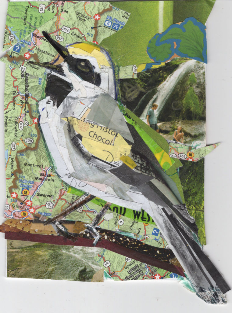 Northern Parula Warbler by Kathryn DeMarco, collage 11. 5 x  9. 5 framed at Craven Allen Gallery 300 SOLD