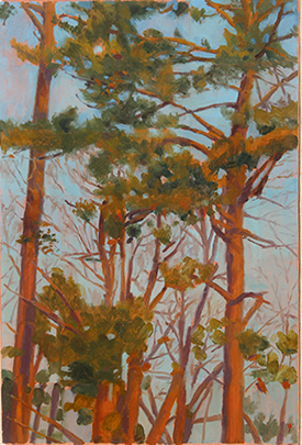 Pine Trees, NC, oil on bristol board, 14 x 9.5 by John Beerman at Craven Allen Gallery
