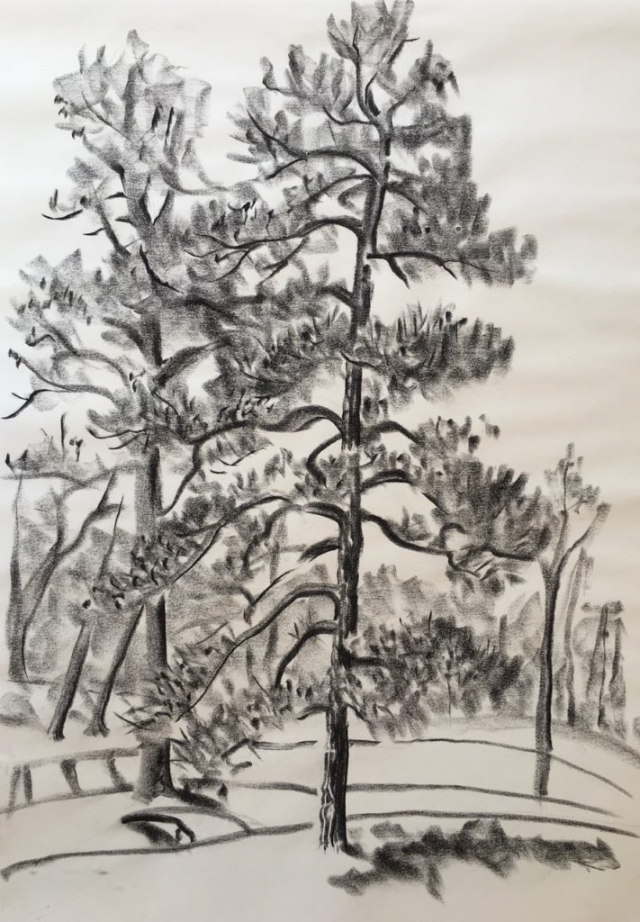 Shelter in Place by Ippy Patterson, charcoal, at Craven Allen Gallery