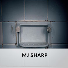 MJ SHARP AT CRAVEN ALLEN GALLERY