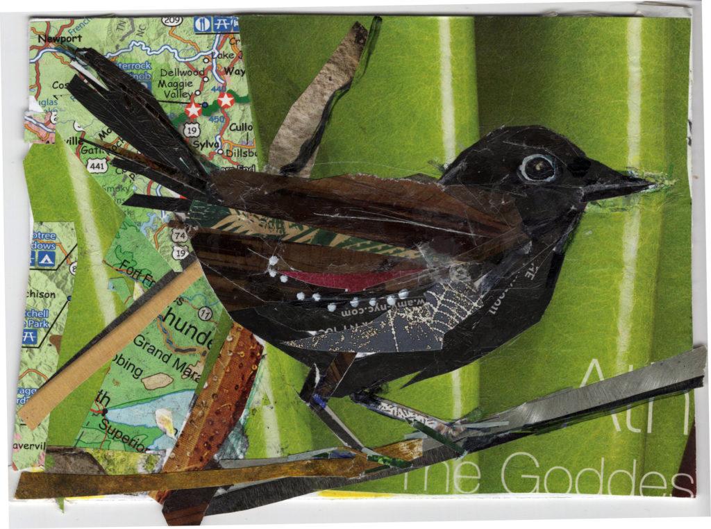 Swamp Antwren by Kathryn DeMarco, collage 11. 5 x  9. 5 framed at Craven Allen Gallery 300 SOLD