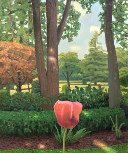 Chatwood Trees and Poppy, oil on linen, 36 x 30 by John Beerman at Craven Allen Gallery