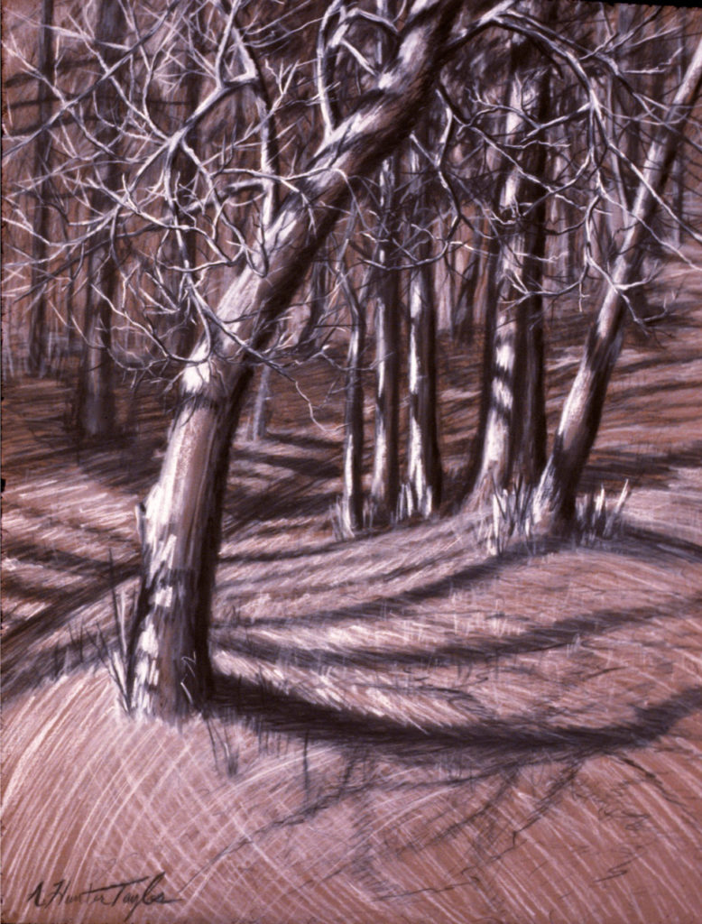 "Trees by Old Roadbed by A. Hunter Taylor, pastel and charcoal, 23"" x 16.75"" Image 31.5 x 25 at Craven Allen Gallery"