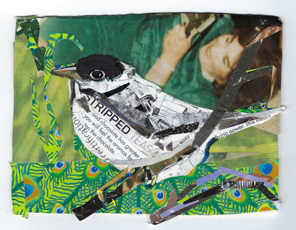 Black Cap Warbler by Kathryn DeMarco, collage, 9 x 11 at Craven Allen Gallery