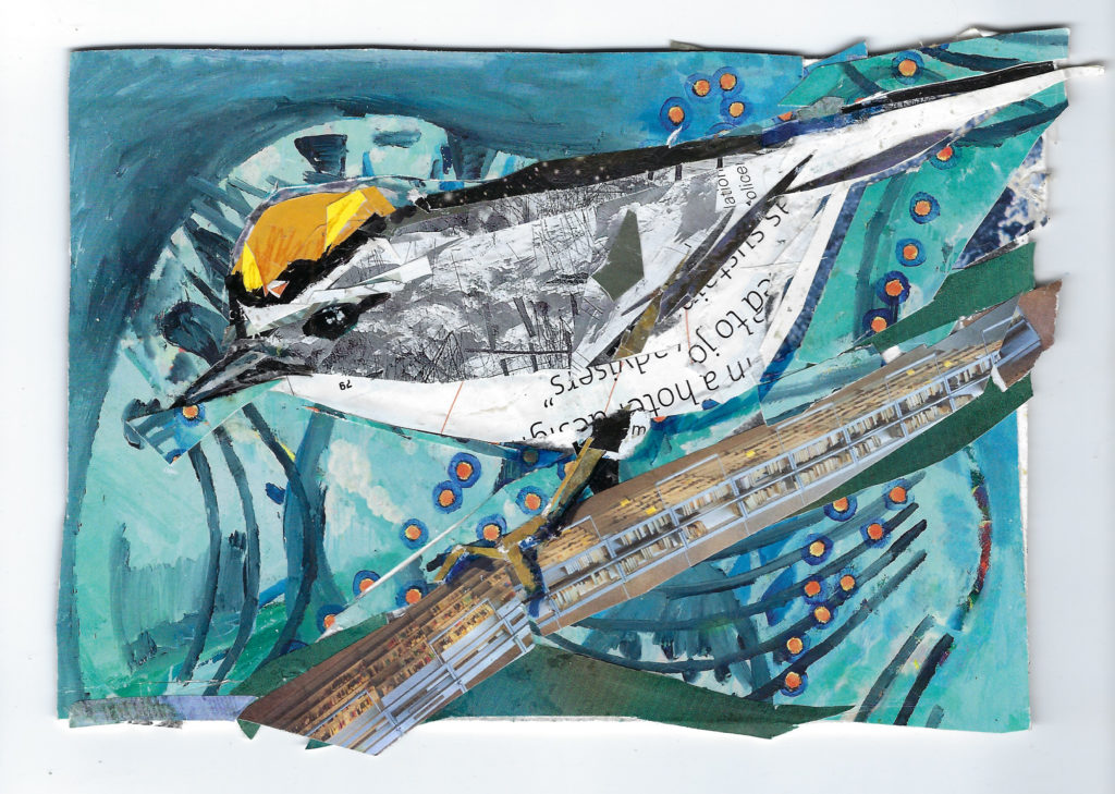 Golden Crowned Kinglet by Kathryn DeMarco, collage, 9 x 11 at Craven Allen Gallery