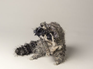 Raccoon, mixed materials, by Bryant Holsenbeck at Craven Allen Gallery
