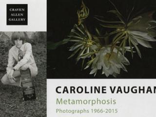 CAROLINE VAUGHAN: METAMORPHOSIS AT CRAVEN ALLEN GALLERY